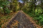 so schön ist der Herbst