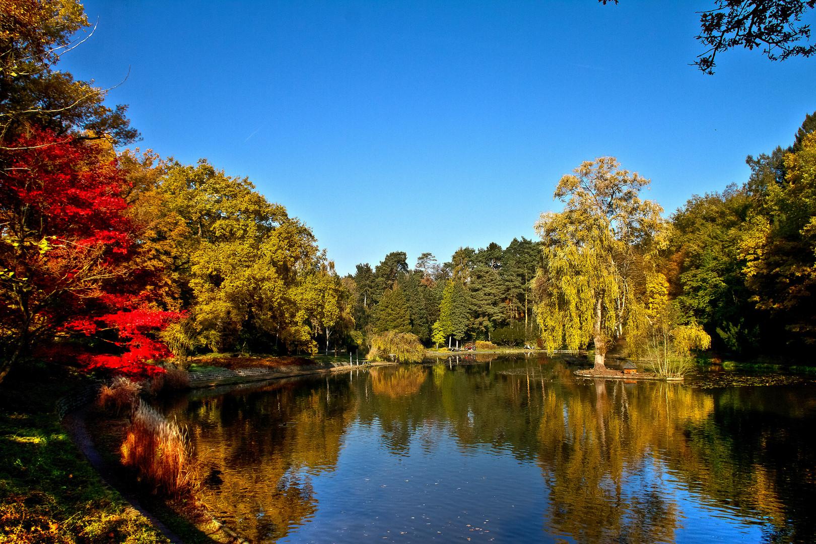 ..so schön ist der Herbst in Bamberg