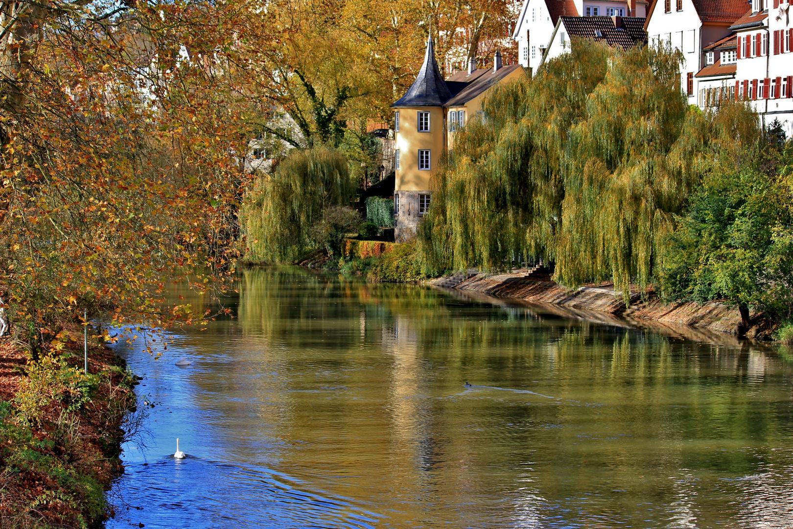so schön ist es am Neckar