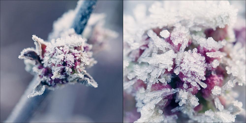 *so schön ist winter