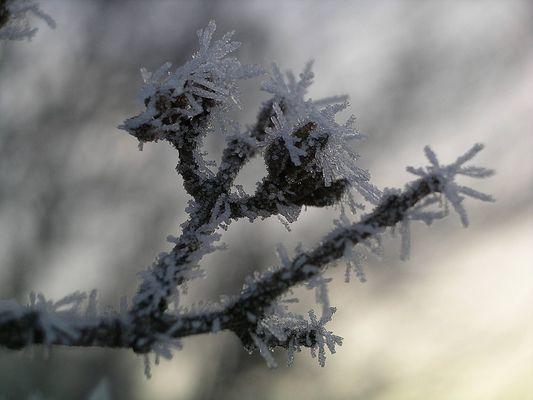 So schön kann Winter sein! II