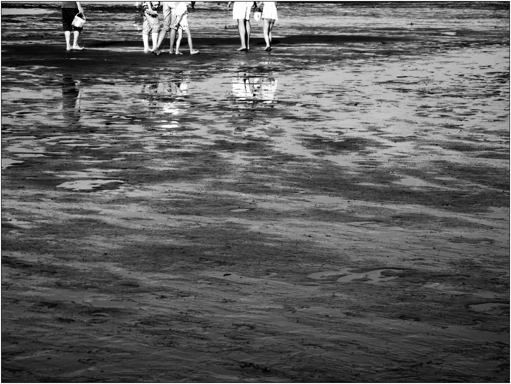 So Tage am Meer ... (16)