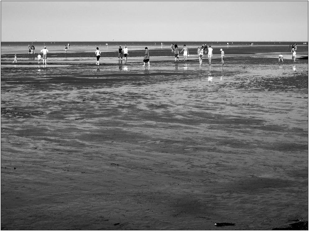So Tage am Meer ...(25)
