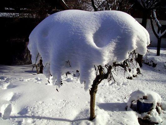 So war der Winter ...