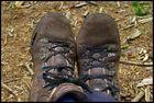 So weit die Schuhe .....