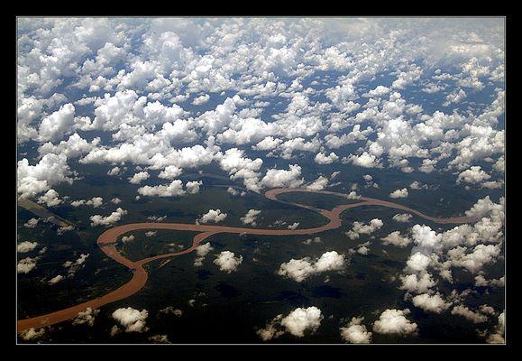 - sobrevolando la selva -