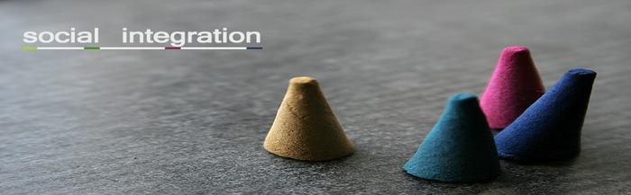 social_integration