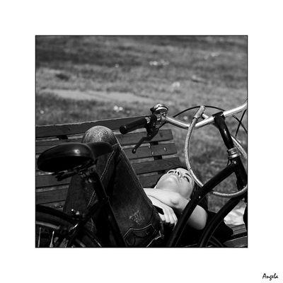 Sognando la moto