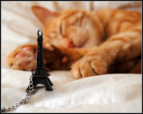 Sognando Parigi.