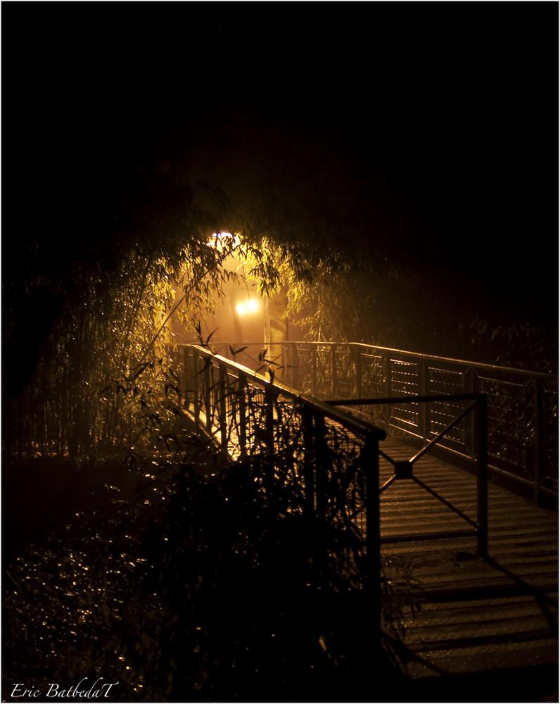 Soir de Brouillard 3