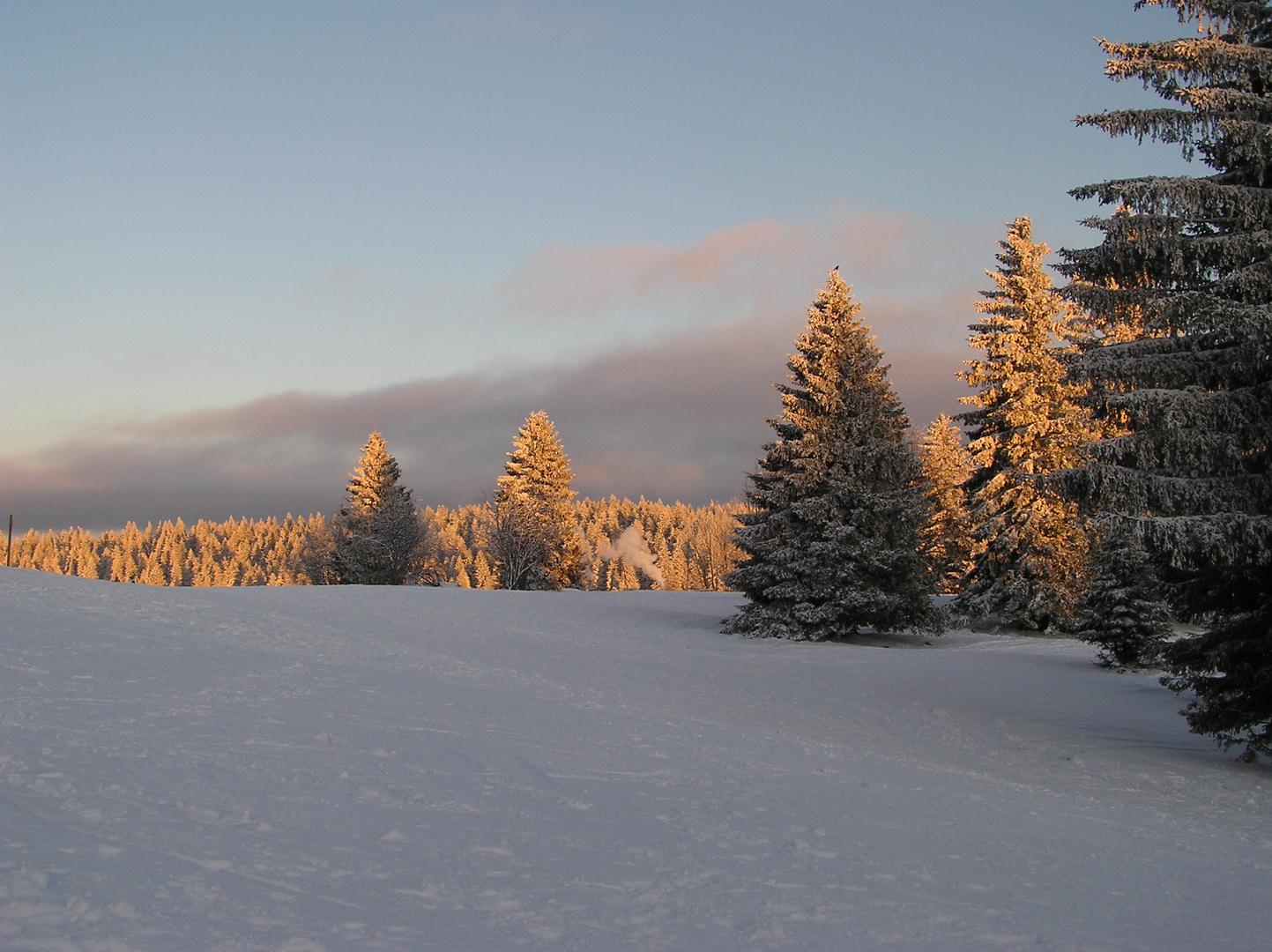 Soirée hivernale au Forêt Noir