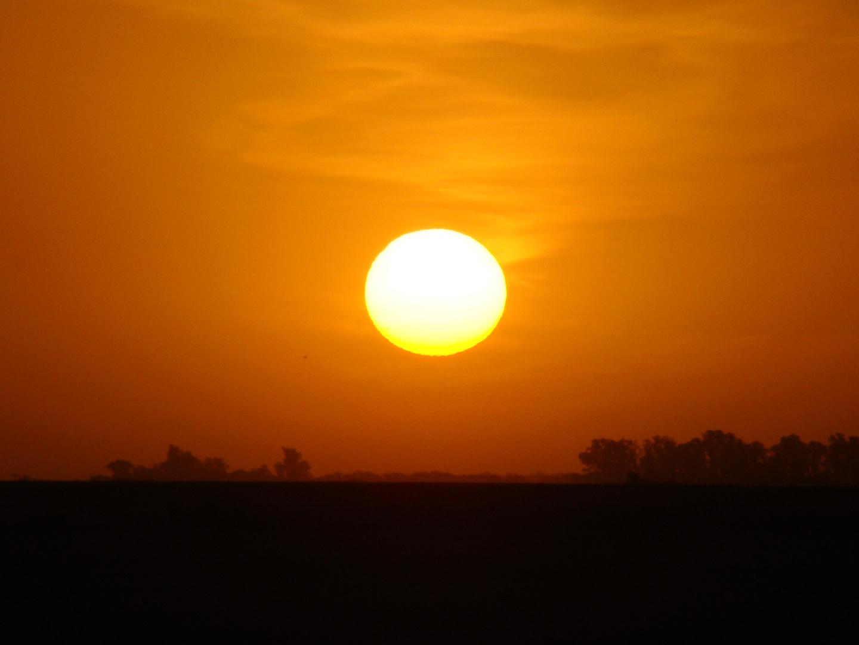 sol & campo