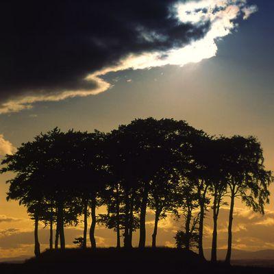 Solar Twilight