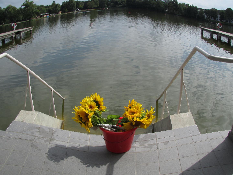 Solarenergie-bringt  bestimmt 1 Grad mehr für den See?!