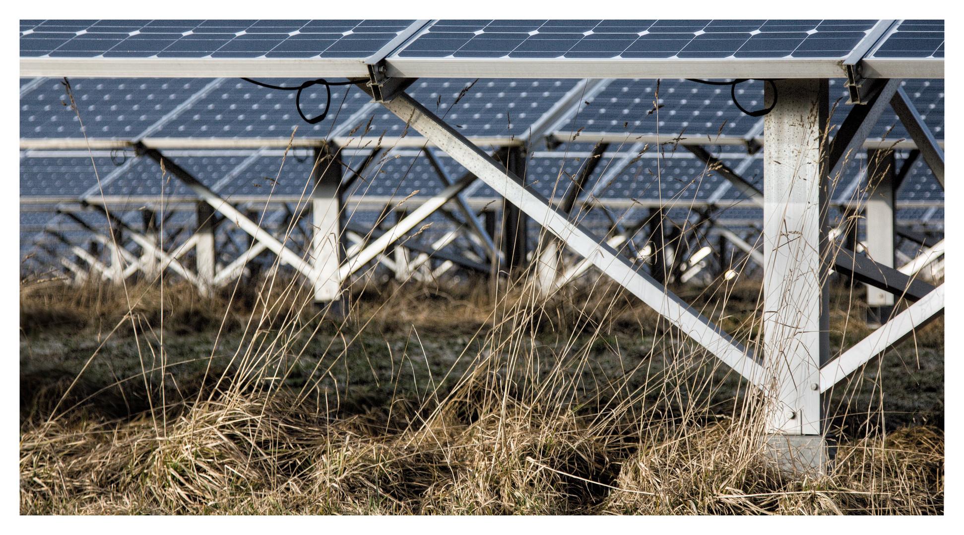 Solarpark II