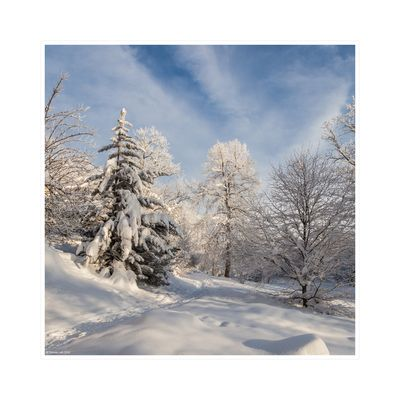Solche Winterimpressionen...