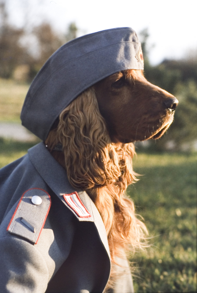 Soldat Perry