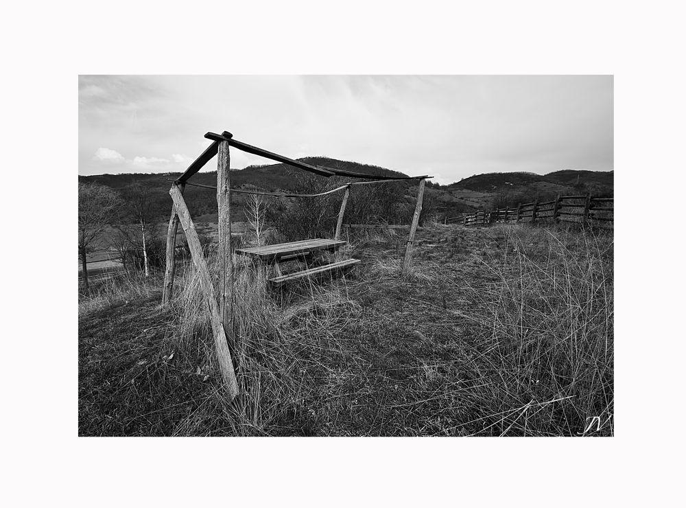..soledad del campo