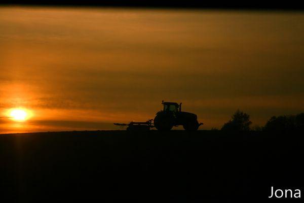Soleil, compréhension d'une culture agricole