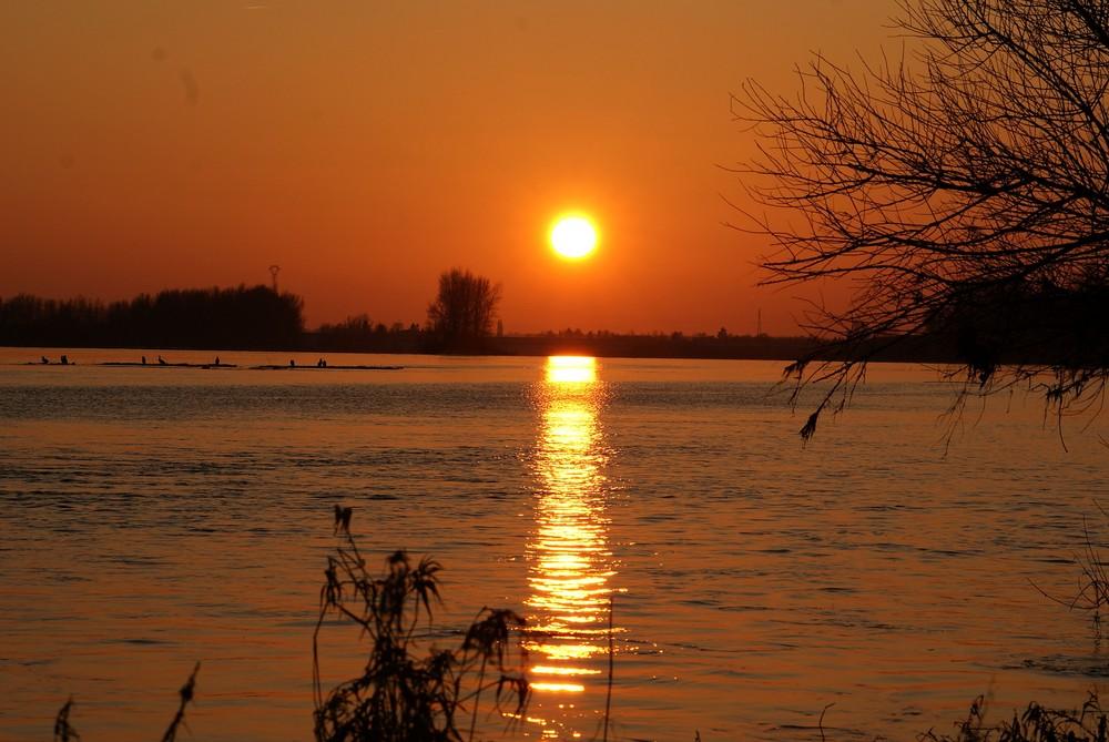 soleil d hiver