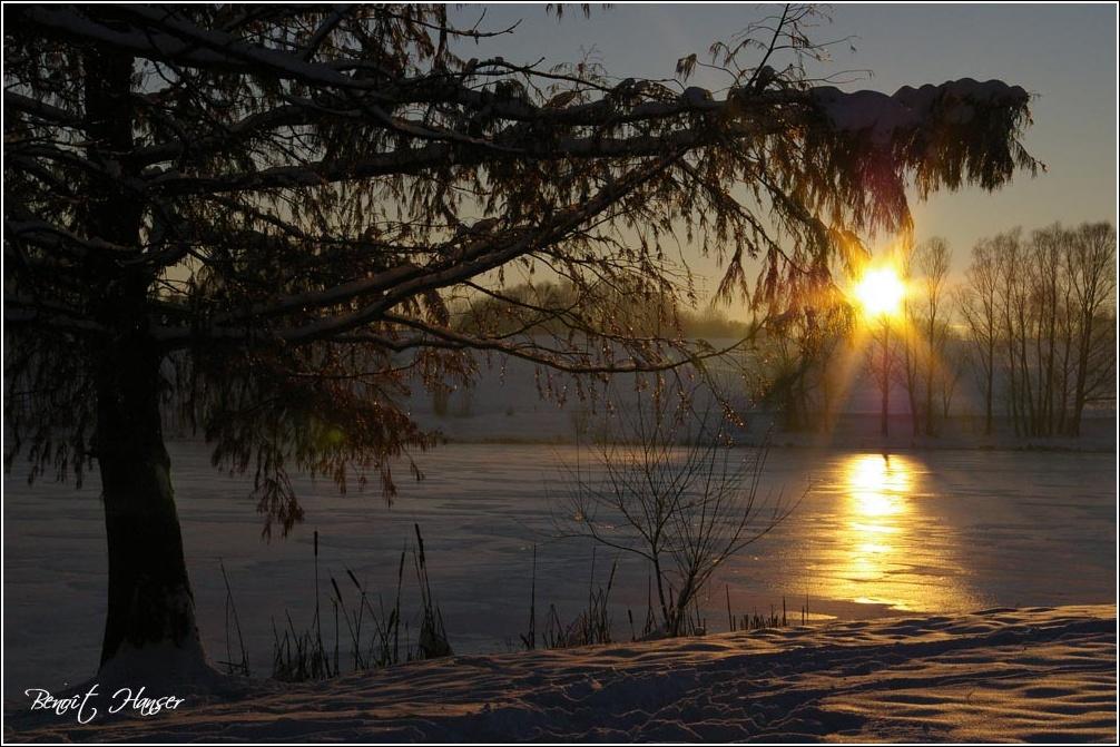 Soleil d'hiver - Lac de Michelbach