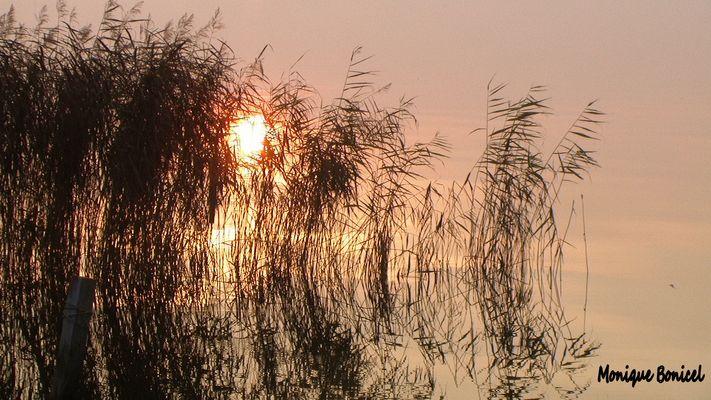 soleil rencontrant l'eau