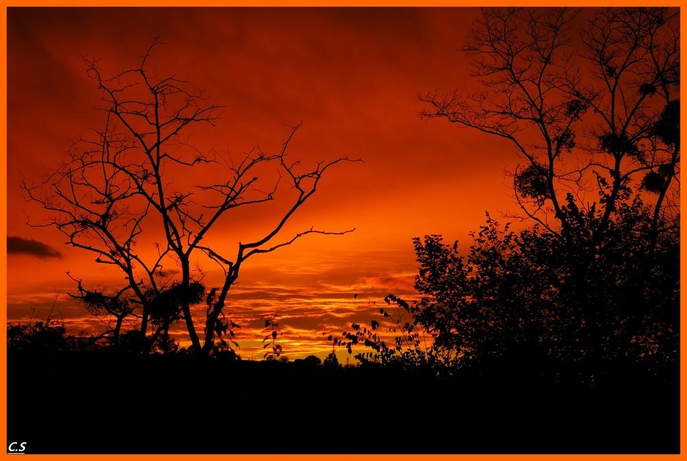 soleil rouge du soir asséche la mare