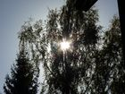 Soleil, soleil!!!
