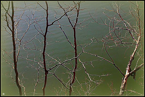 Soleil sur la Garonne.....