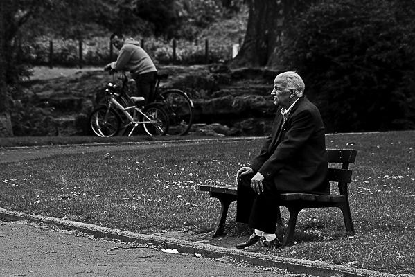 Solitaire du parc