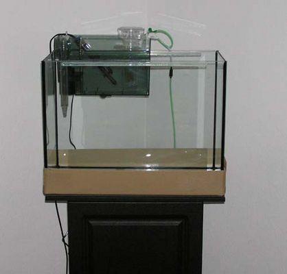 soll mal ein Meerwasseraquarium werden