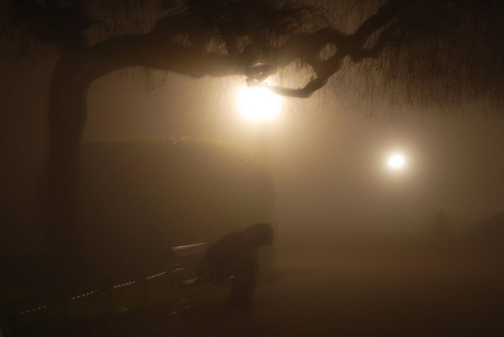 solo al parco in una notte di nebbia....