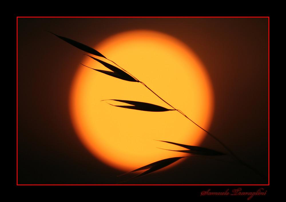 Solo un tramonto