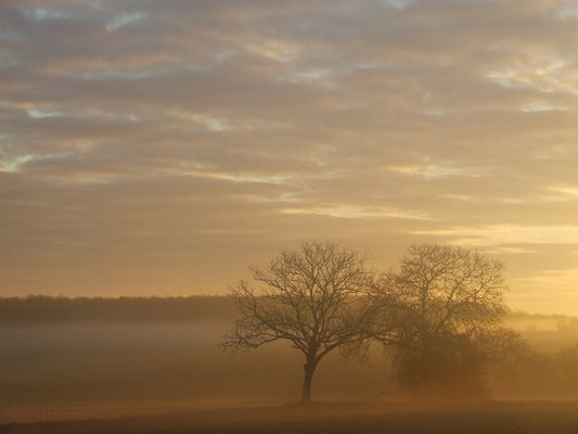 solstice d hiver