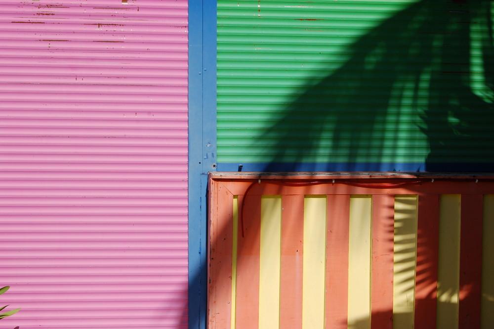 sombra de palmera