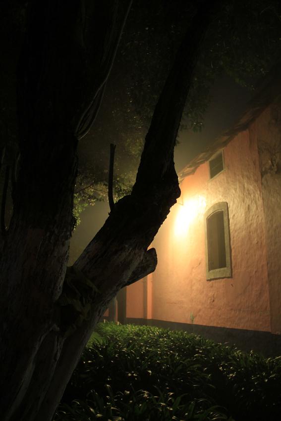 sombras nocturnas 2