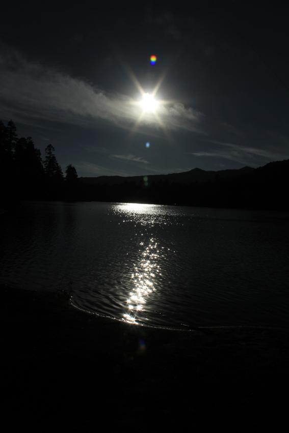 sombras nocturnas 3