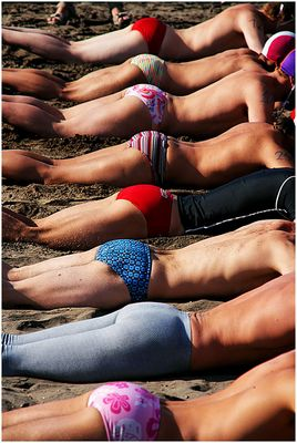 [ some asses in a row ]