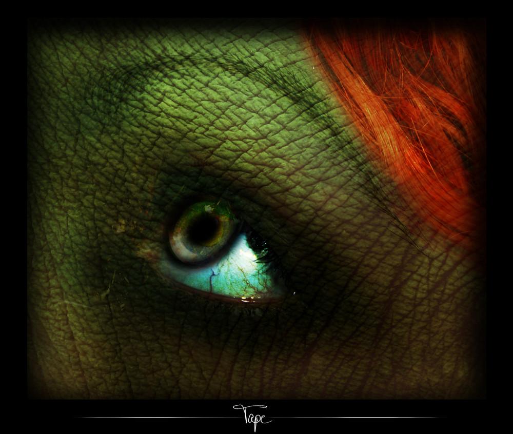 Something Strange - Eyecatcher