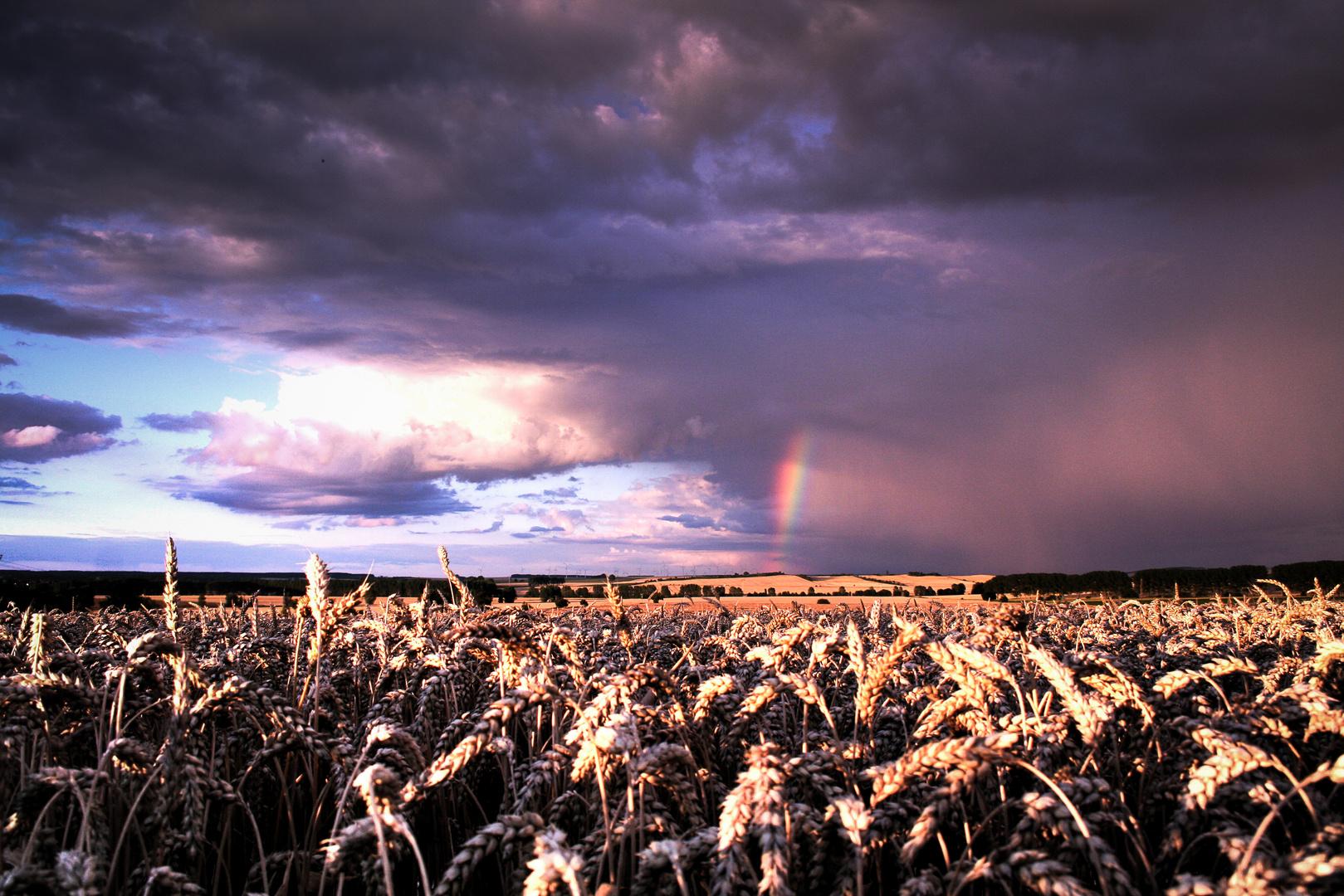 somewhere........ over the rainbow