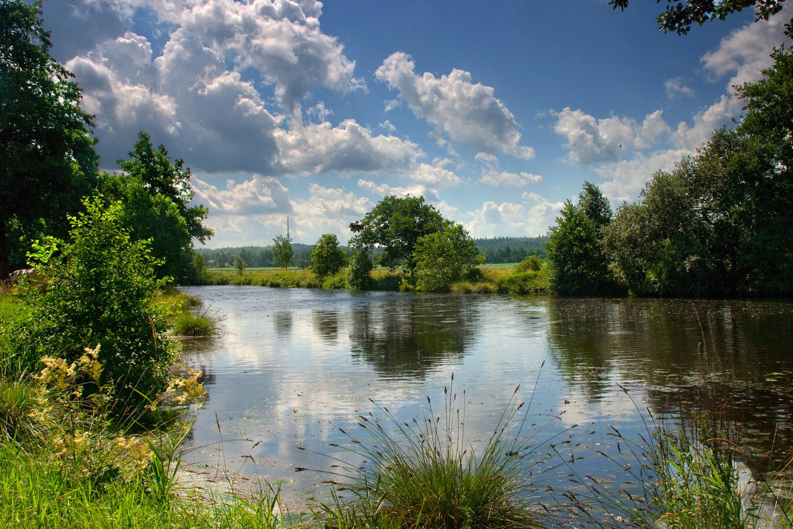 Sommer am Teich