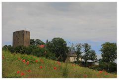 Sommer auf Burg Adelebsen