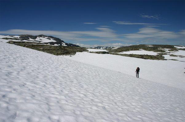 Sommer auf der Hardangervidda