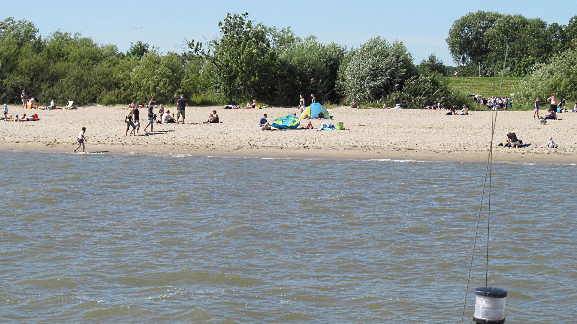 Sommer auf Krautsand an der Elbe