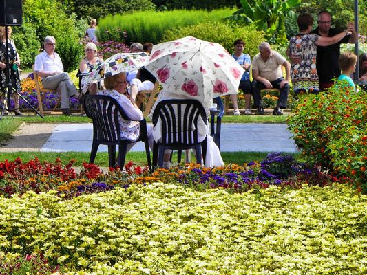 Sommer im Botanischen Garten Solingen