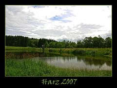 Sommer im Harz