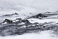 Sommer im isländischen Hochland