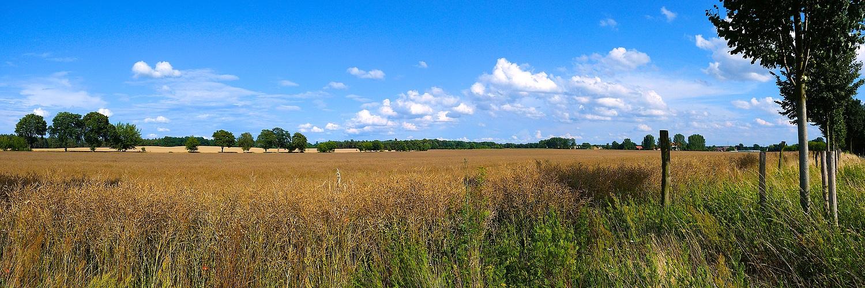 Sommer im Land Brandenburg