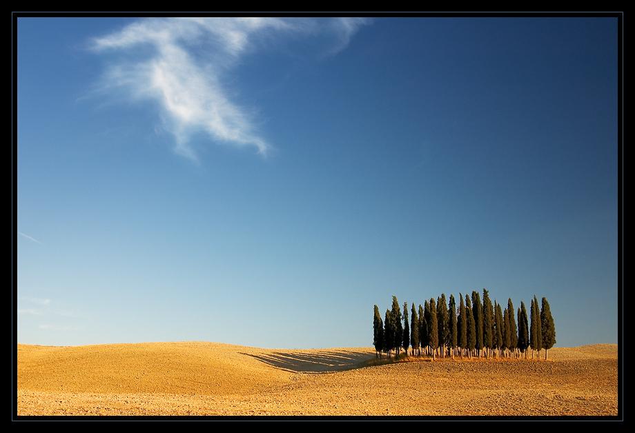 Sommer in der Toskana_06