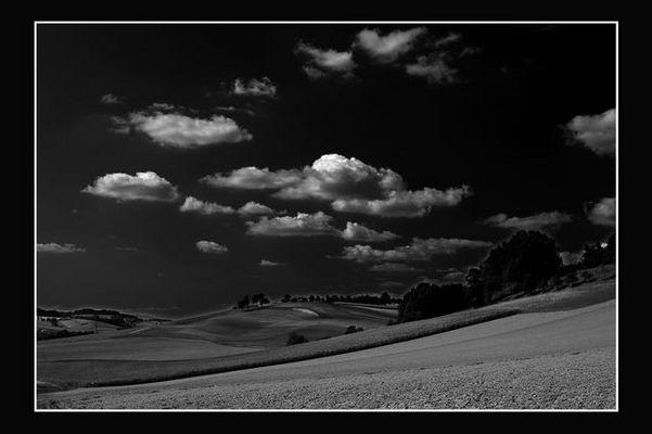 Sommer in Schwarz Weiß